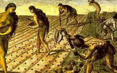 Nativos trabajando