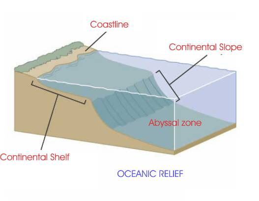 Se extiende desde la plataforma continental hasta las profundidades